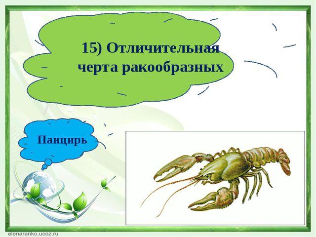 15) Отличительная черта ракообразных Панцирь