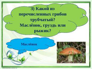 3) Какой из перечисленных грибов трубчатый? Маслёнок, груздь или рыжик? Маслё