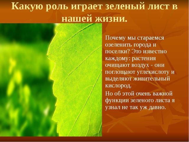 Какую роль играет зеленый лист в нашей жизни. Почему мы стараемся озеленить г...