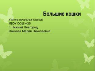 Учитель начальных классов МБОУ СОШ №35 г. Нижний Новгород Панкова Мария Никол