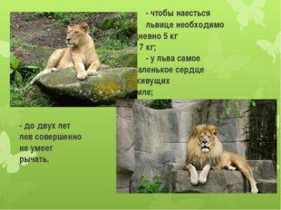- чтобы наесться львице необ