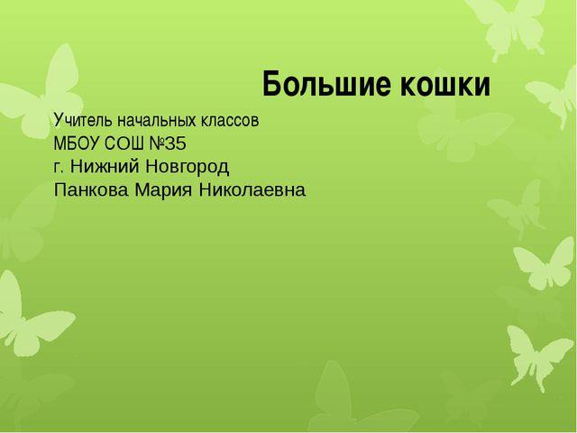 Учитель начальных классов МБОУ СОШ №35 г. Нижний Новгород Панкова Мария Никол...