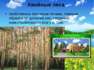 Хвойные леса свойственны песчаным почвам, главным образом по долинам рек, нап