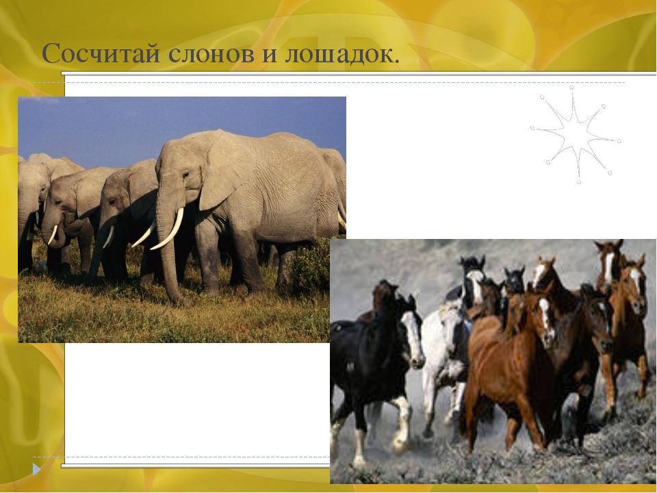 Сосчитай слонов и лошадок.