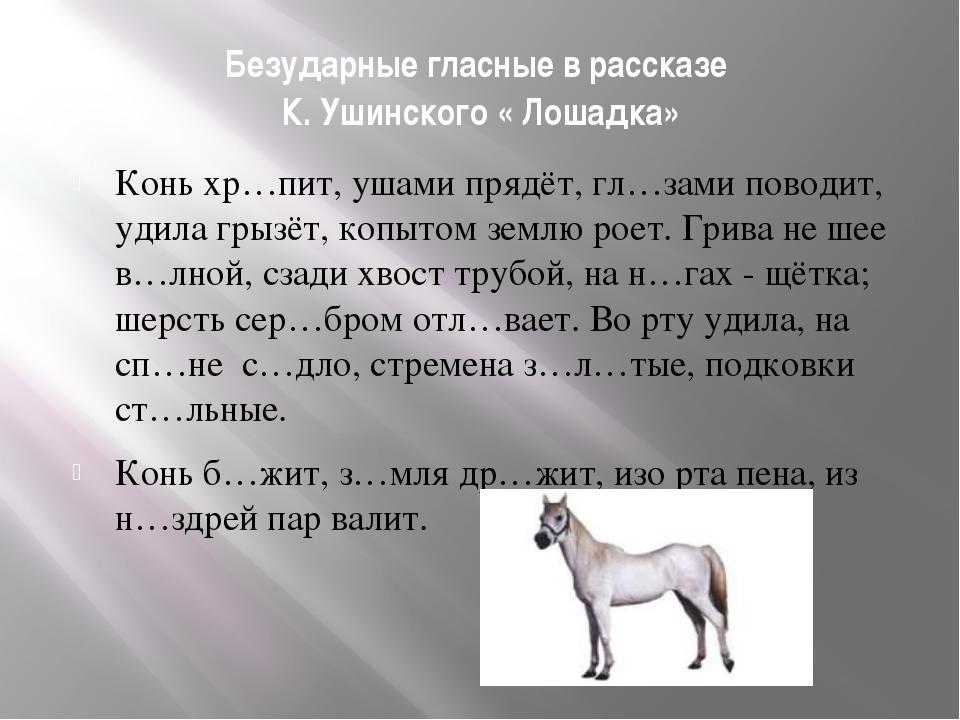 Безударные гласные в рассказе К. Ушинского « Лошадка» Конь хр…пит, ушами пряд...