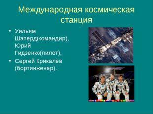 Международная космическая станция Уильям Шэперд(командир), Юрий Гидзенко(пило