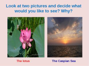Look at two pictures and decide what would you like to see? Why? The Caspian