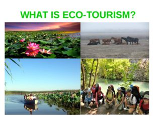 WHAT IS ECO-TOURISM?