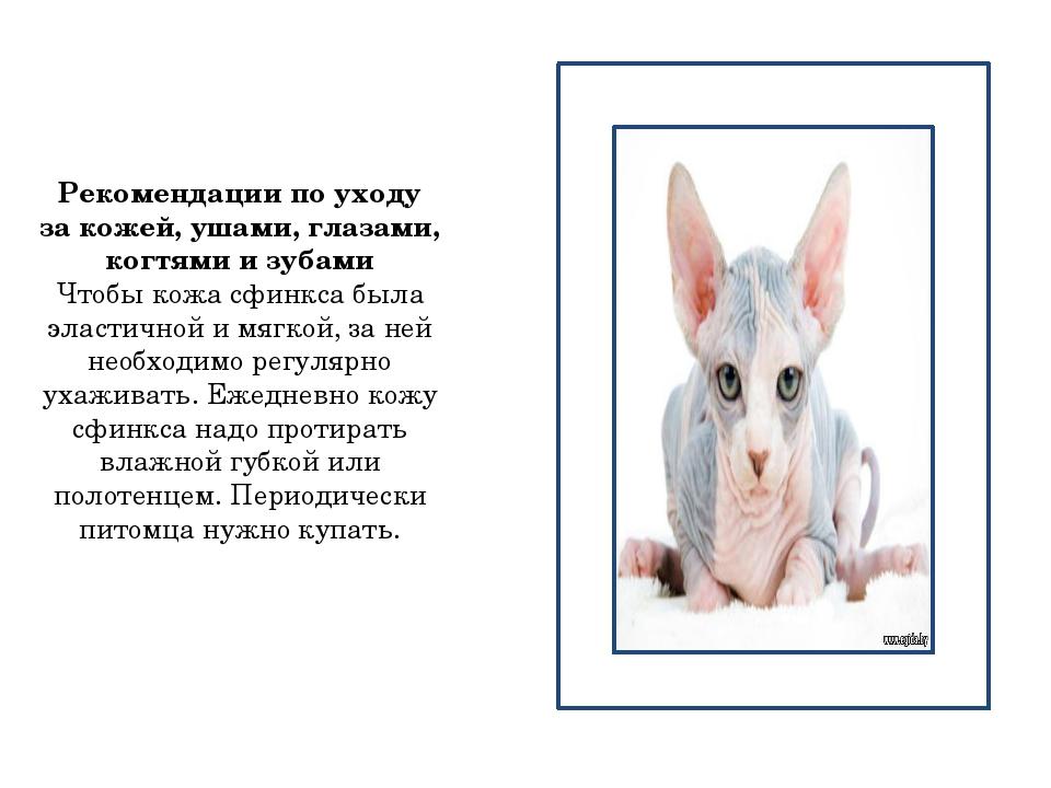 Рекомендации по уходу за кожей, ушами, глазами, когтями и зубами Чтобы кожа...