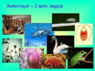 Животные – 2 млн. видов
