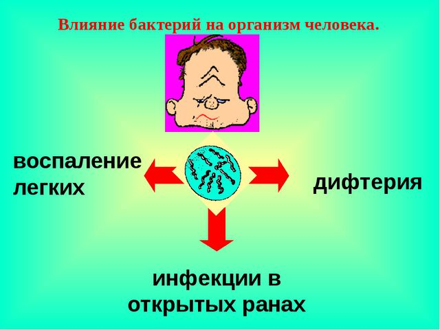 дифтерия воспаление легких инфекции в открытых ранах Влияние бактерий на орг...