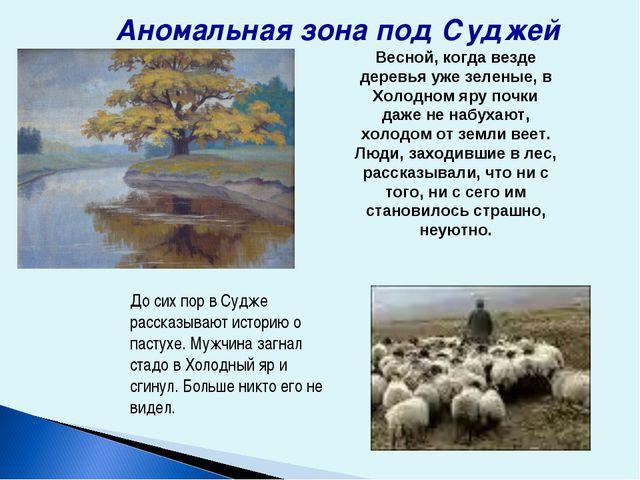 До сих пор в Судже рассказывают историю о пастухе. Мужчина загнал стадо в Хол...