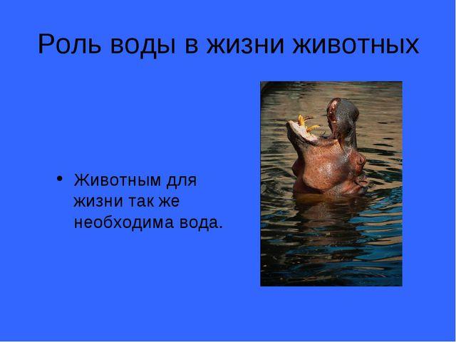 Роль воды в жизни животных Животным для жизни так же необходима вода.