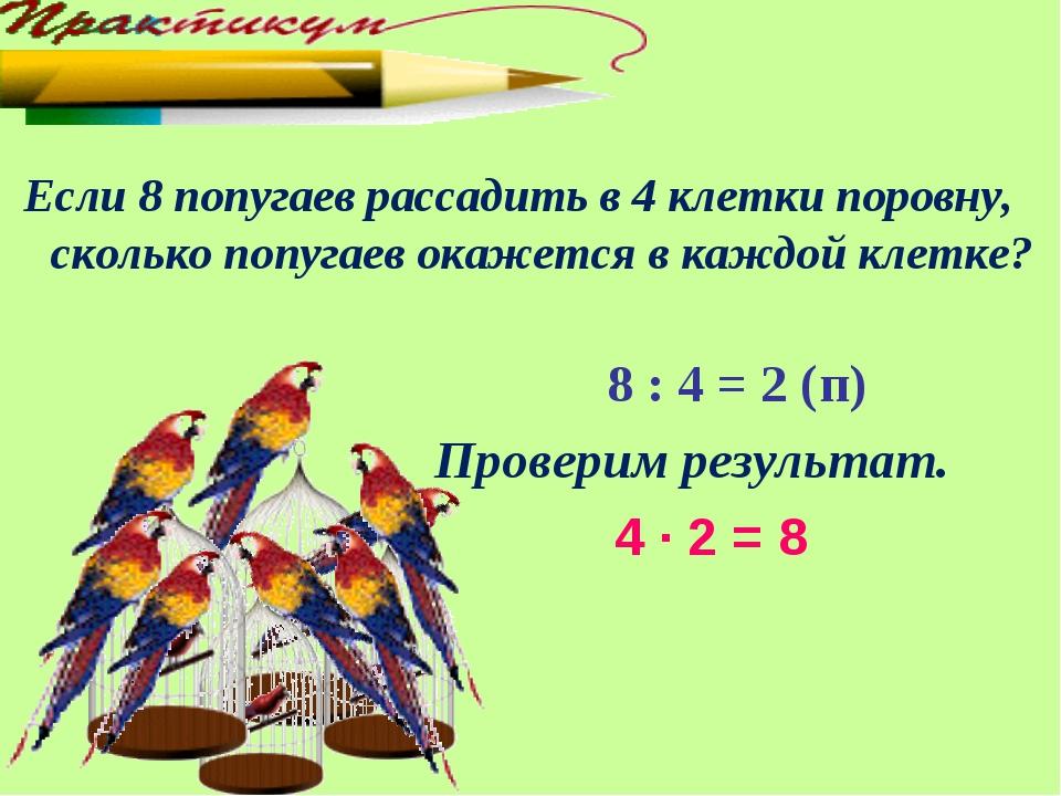 Если 8 попугаев рассадить в 4 клетки поровну, сколько попугаев окажется в ка...