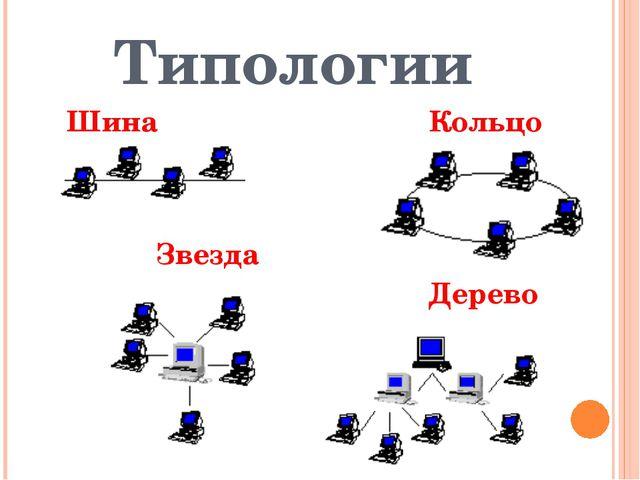 Типологии Шина Кольцо Звезда Дерево