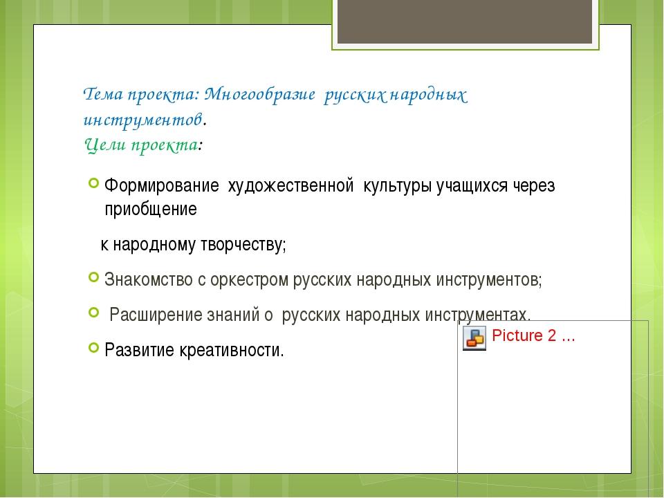 Тема проекта: Многообразие русских народных инструментов. Цели проекта: Форми...