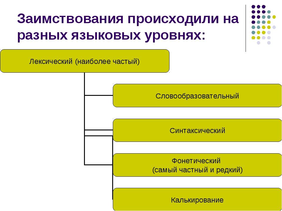 Заимствования происходили на разных языковых уровнях: