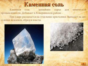 Каменная соль Каменная соль – ценнейшее сырье для химической промышленности.