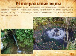 Минеральные воды Минеральные воды оказывают положительное воздействие на нер