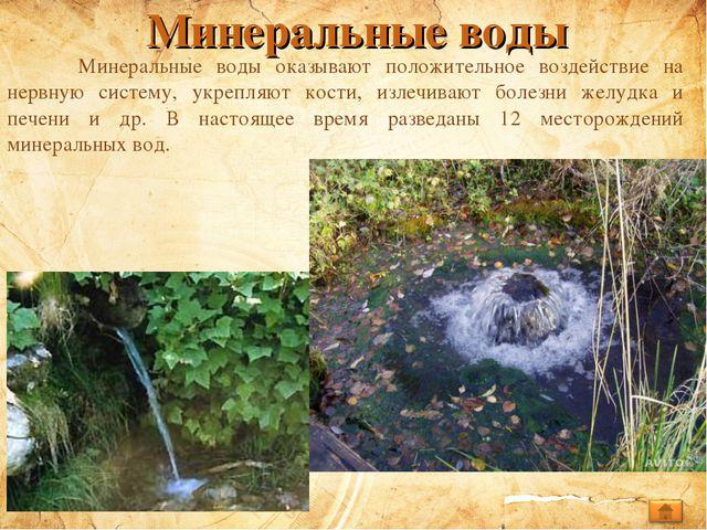 Минеральные воды Минеральные воды оказывают положительное воздействие на нер...