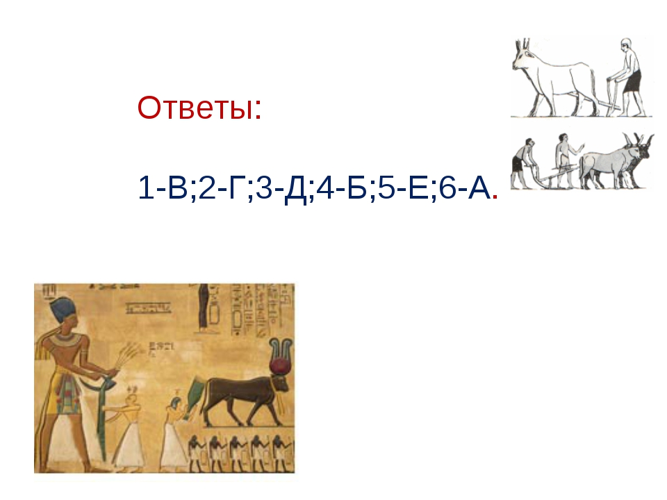 Ответы: 1-В;2-Г;3-Д;4-Б;5-Е;6-А.