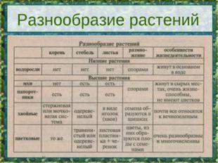 * * Разнообразие растений
