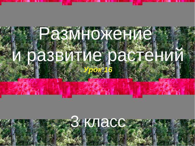 Размножение и развитие растений Урок 16 3 класс