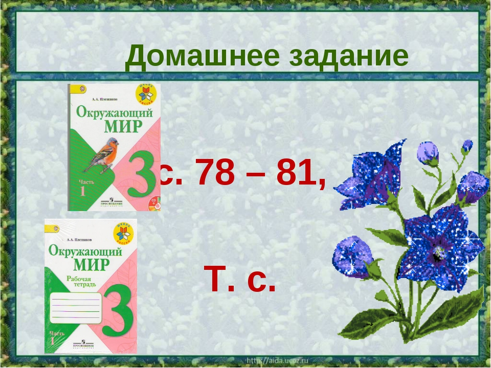 Домашнее задание с. 78 – 81, Т. с.