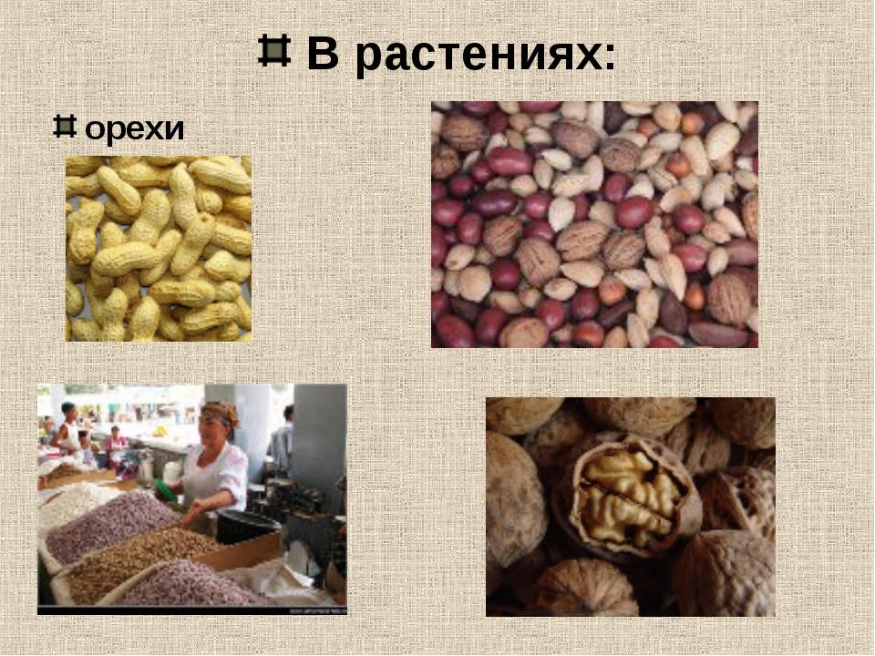 В растениях: орехи