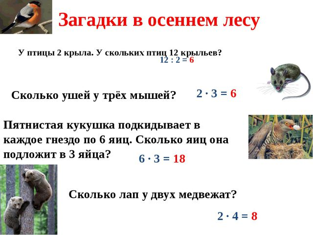 У птицы 2 крыла. У скольких птиц 12 крыльев? 12 : 2 = 6 Сколько ушей у трёх м...