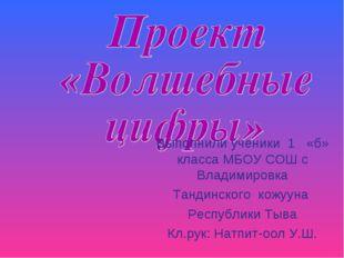Выполнили ученики 1 «б» класса МБОУ СОШ с Владимировка Тандинского кожууна Ре