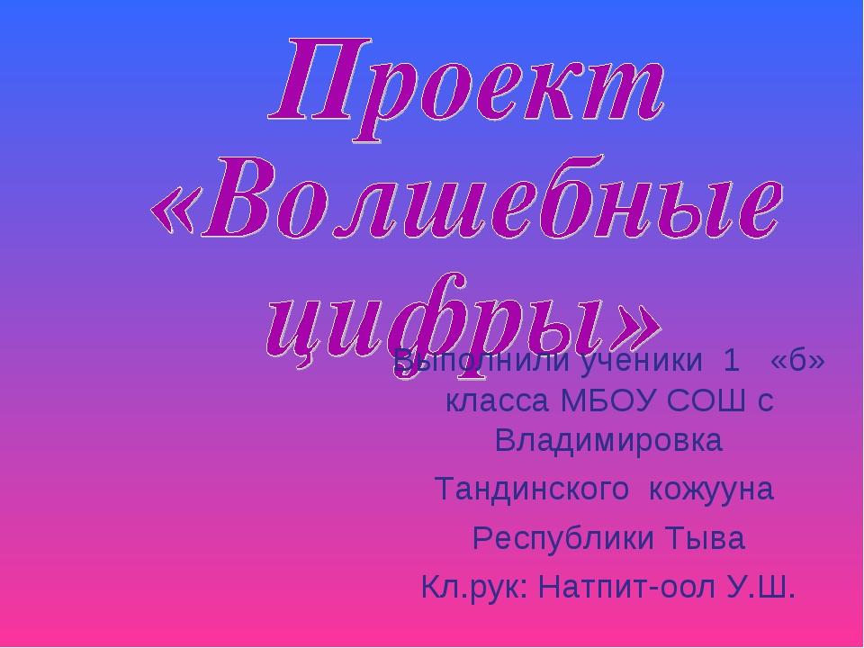 Выполнили ученики 1 «б» класса МБОУ СОШ с Владимировка Тандинского кожууна Ре...
