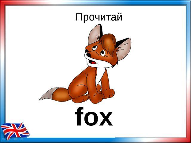 Прочитай fox