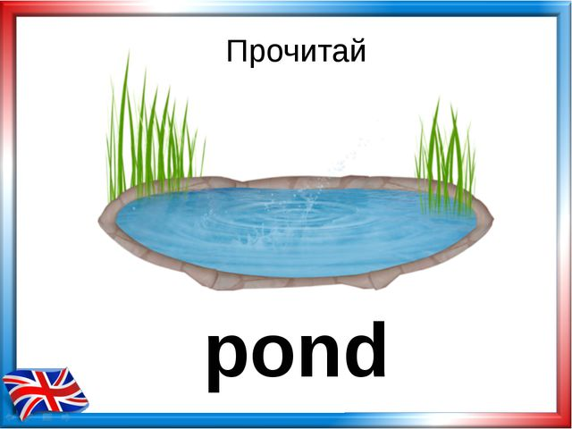 Прочитай pond