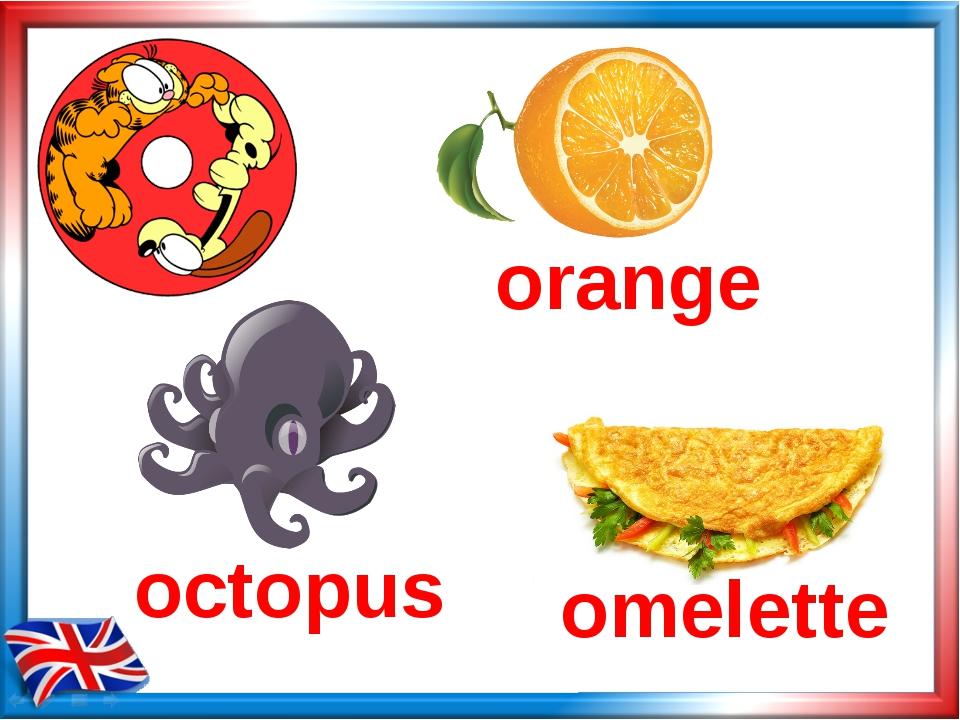 octopus omelette orange