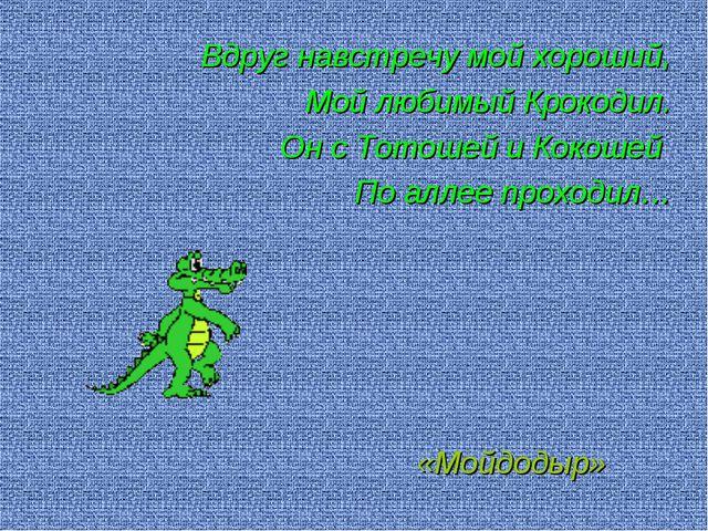 Вдруг навстречу мой хороший, Мой любимый Крокодил. Он с Тотошей и Кокошей По...