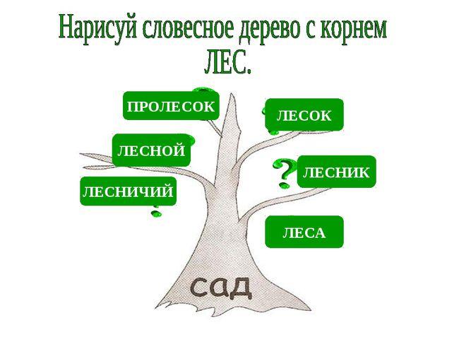 ЛЕСНОЙ ЛЕСНИК ЛЕСОК ЛЕСНИЧИЙ ЛЕСА ПРОЛЕСОК