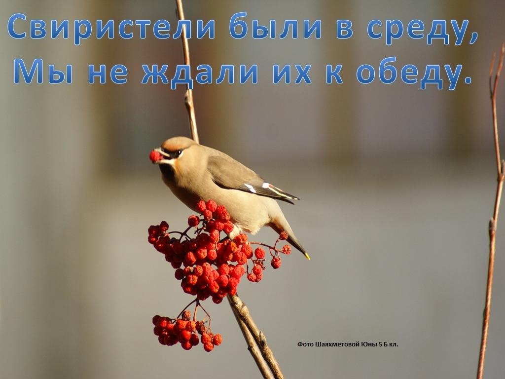 hello_html_m35c7fe39.jpg