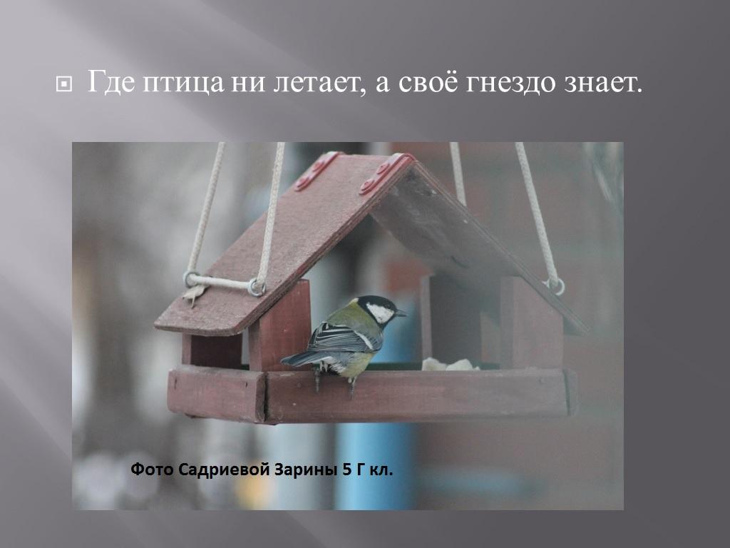 hello_html_m503a0077.jpg