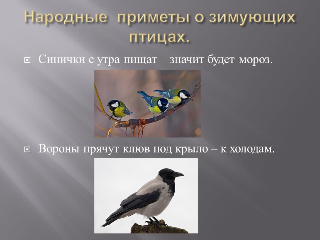 hello_html_m644e7be1.jpg