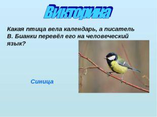 Какая птица вела календарь, а писатель В. Бианки перевёл его на человеческий