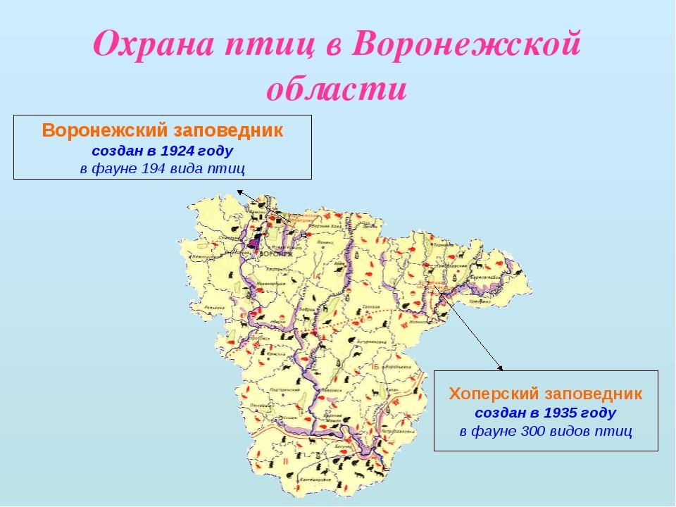 Охрана птиц в Воронежской области Воронежский заповедник создан в 1924 году в...