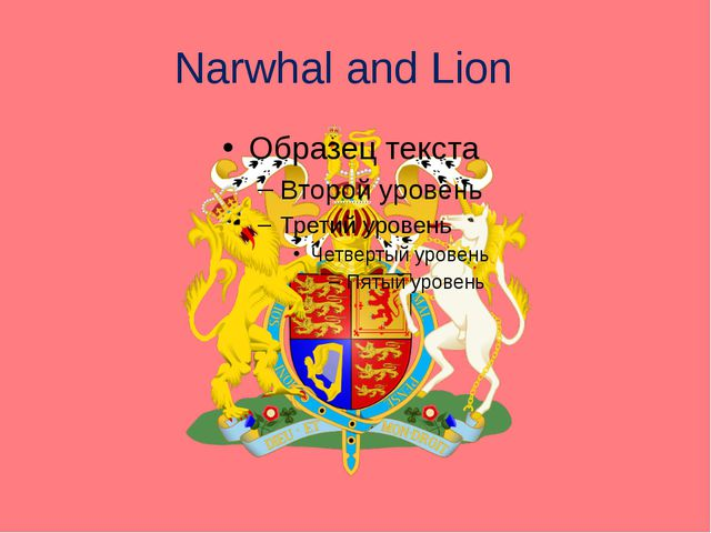 Narwhal and Lion