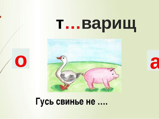 т…варищ о а Гусь свинье не ….