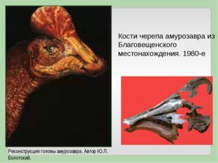 Кости черепа амурозавра из Благовещенского местонахождения. 1980-е Реконструк