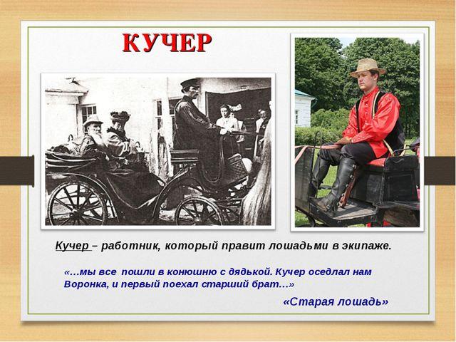 КУЧЕР «Старая лошадь» Кучер – работник, который правит лошадьми в экипаже. «...