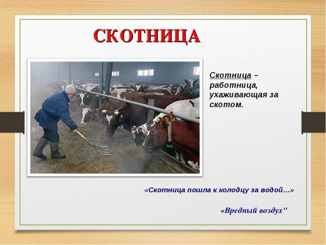 """СКОТНИЦА «Вредный воздух"""" Скотница – работница, ухаживающая за скотом. «Скотн..."""