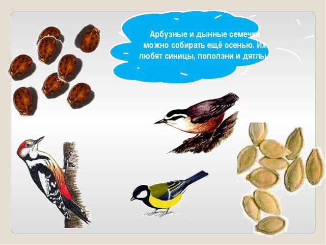 Арбузные и дынные семечки можно собирать ещё осенью. Их любят синицы, поползн...