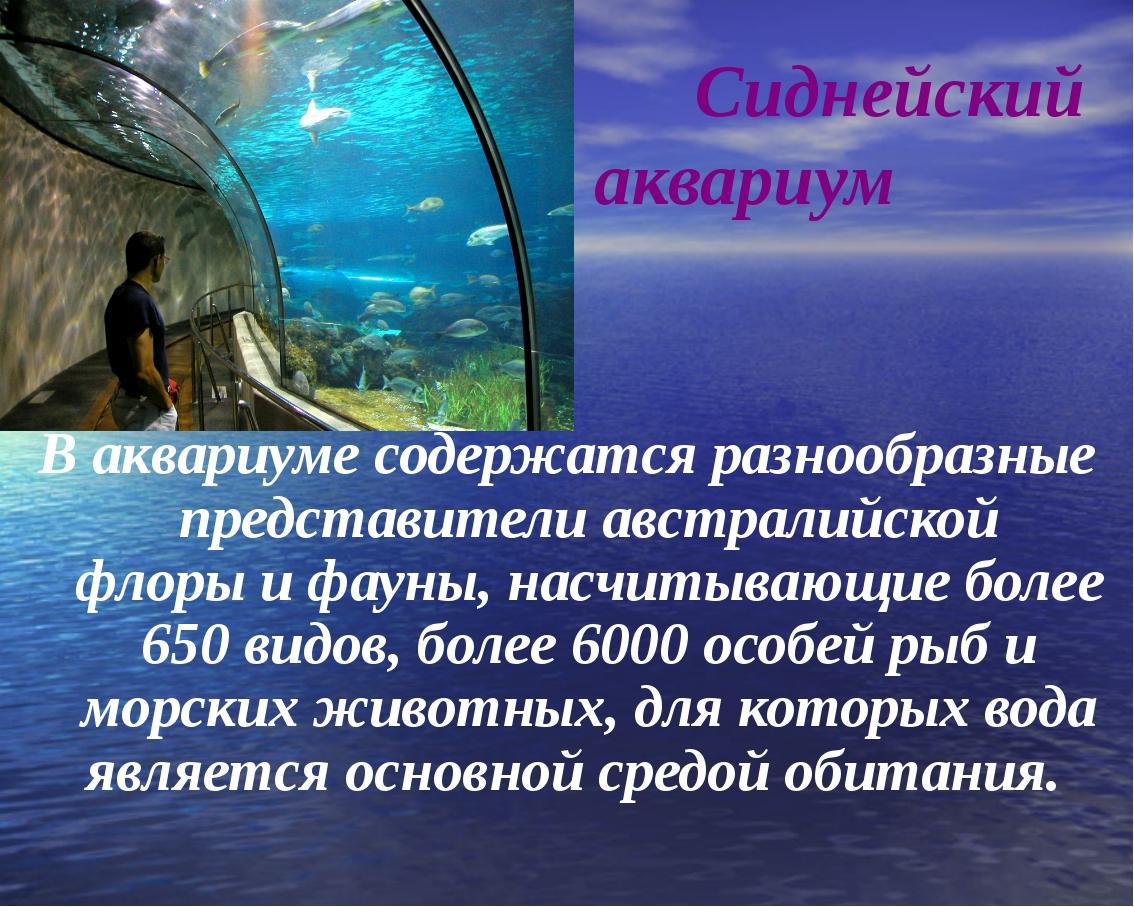 Сиднейский аквариум В аквариуме содержатся разнообразные представителиавстр...