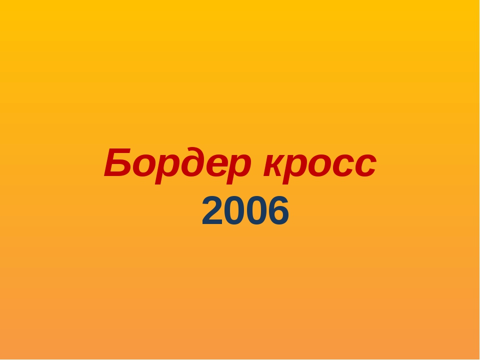 Бордер кросс 2006